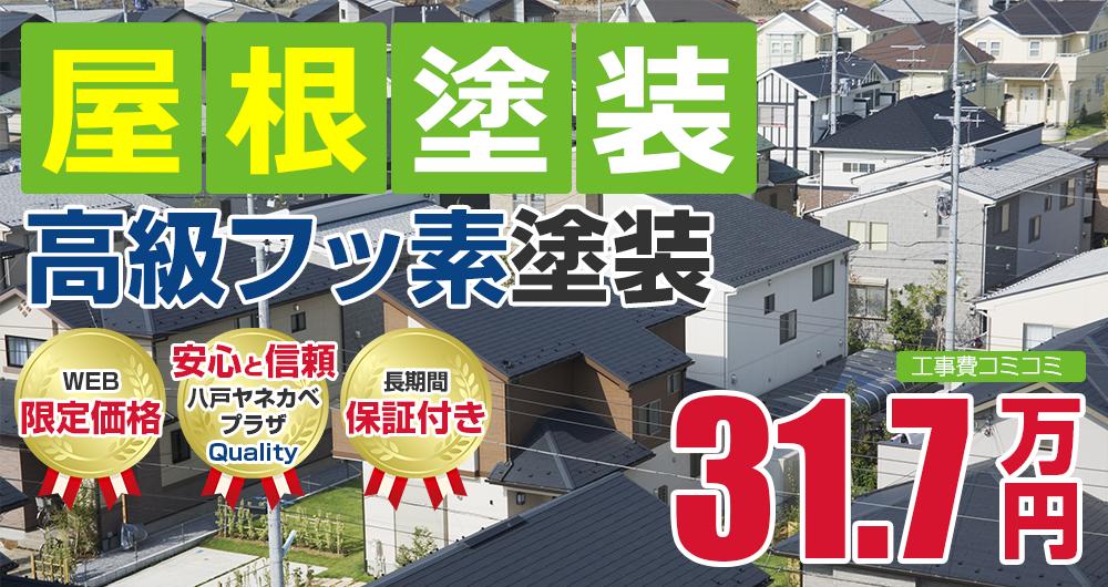 高級フッ素塗装塗装 31.7万円