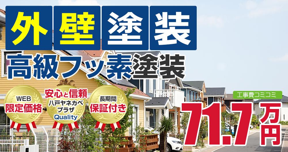 高級フッ素塗装塗装 71.7万円