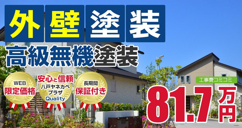 高級無機塗装塗装 81.7万円